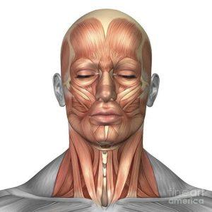 harmonizacao-facial